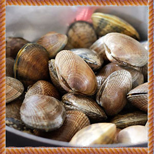 50CT_Clams