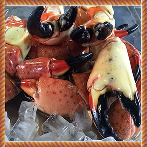Medium_FL_Stone_Crab_Claws